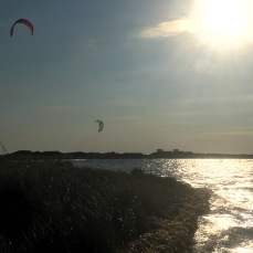and on the shore they are kiting