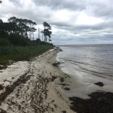 evening walk along the beach